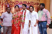 Amala Paul Al Vijay wedding Photos gallery-thumbnail-11