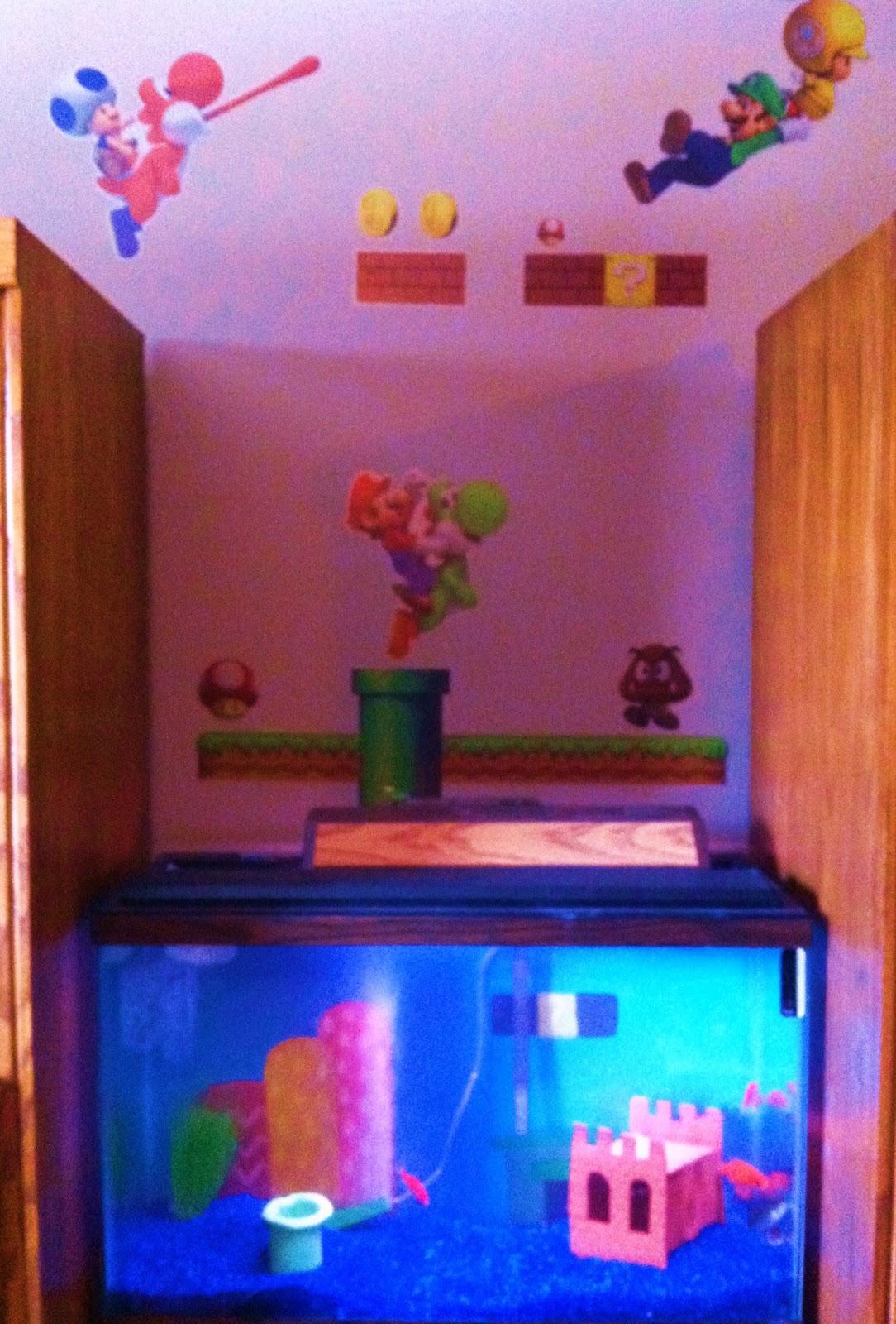 Project super mario themed aquarium americangoodz for Mario fish tank