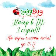 """""""LadyBug"""" набор в ДК"""