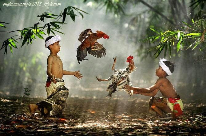 BUDAYA ASLI INDONESIA