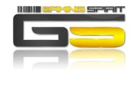 GAMING SPIRIT