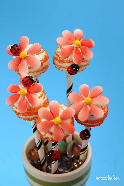 These Easy Candy Flower Cake Pops are perfect for your garden party with your little fairies. They would be so fun for birthday party favors.