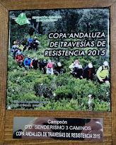Copa Andaluza Travesías
