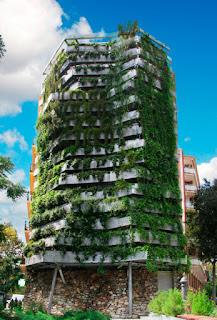 medianera verde. Barcelona