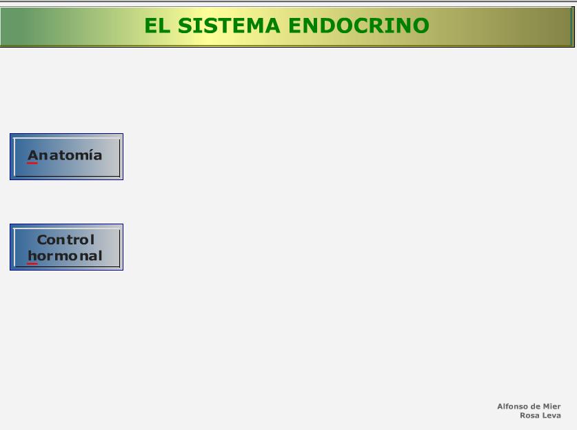http://recursostic.educacion.es/secundaria/edad/3esobiologia/3quincena12/imagenes1/endocrino.swf