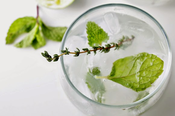 Spring Herb Mojito