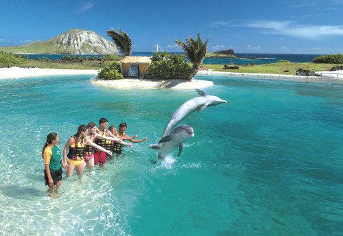 Hawaii Big Island Vacation Package Deals