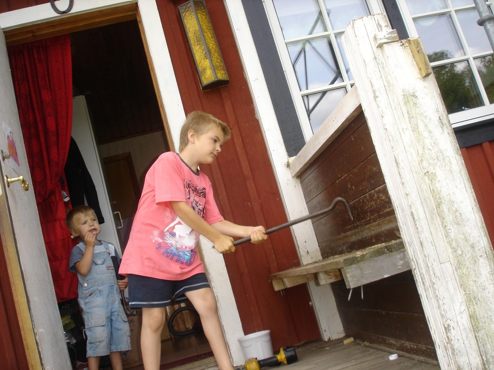 Anitha Östlund meijer: dagboksinlägg 15 juli hästmyror och rivning ...