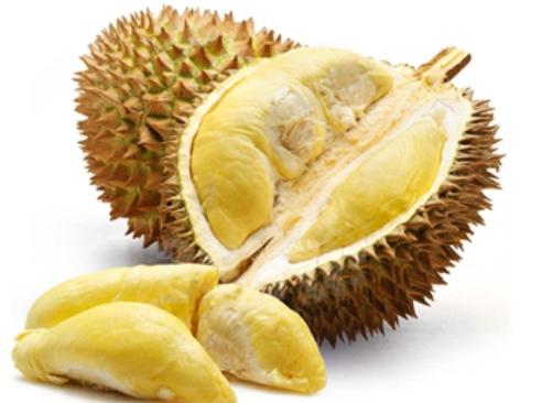 Manfaat dan Kandungan Durian Untuk Kesehatan