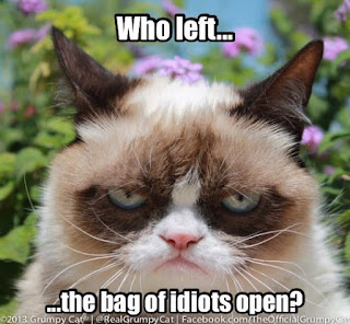 who left bag of idiots open, grumpy cat, new grumpy cat meme