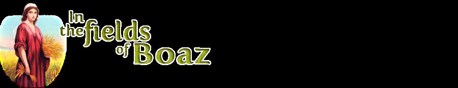 In the fields of Boaz