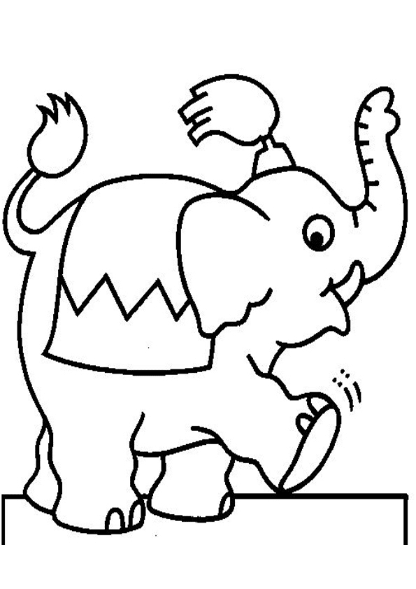 Colorear animales del circo