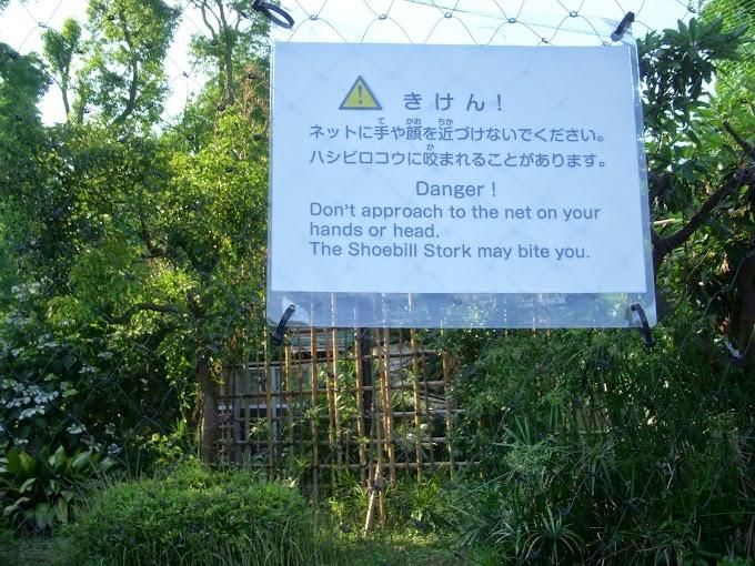 Ueno Zoo Part VII: Other West Garden Exhibits