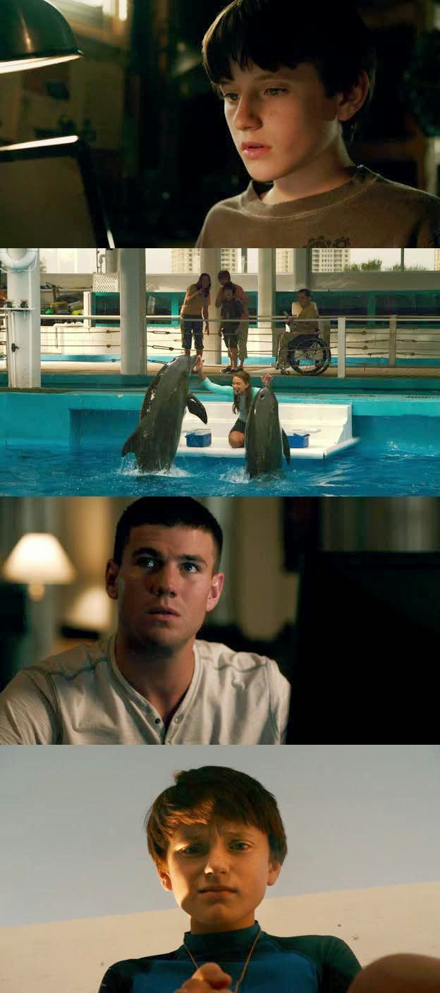 Dolphin Tale DVDRip Latino
