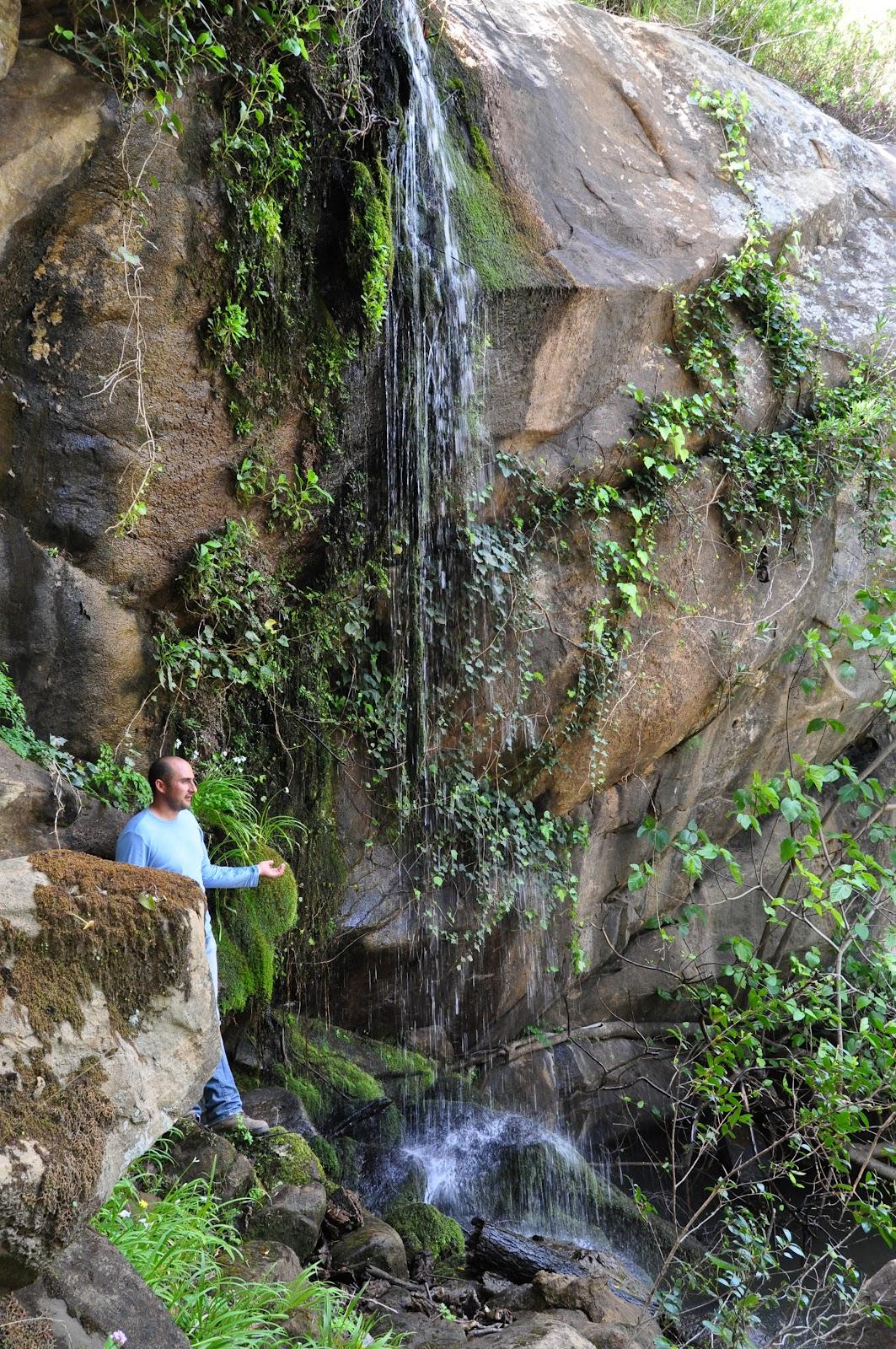 A media horita buitreras del salado y cascada de la crica for Cascada par