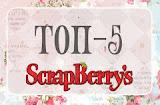Я в ТОП-5 в Scrapberry's