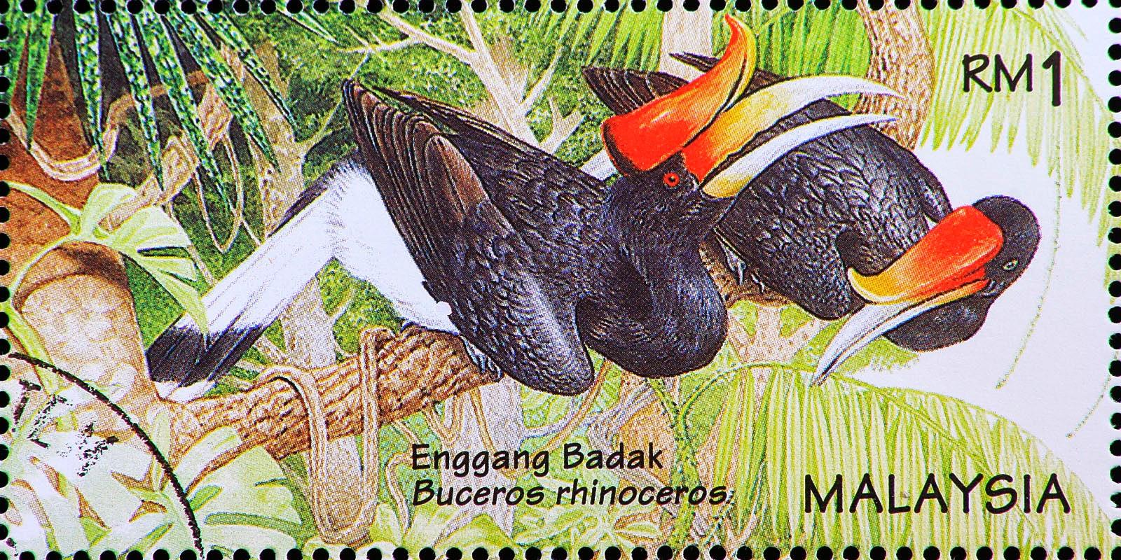 Malaysia 1996 Wildlife stamps - Rhinoceros Hornbill / Enggang Badak (Buceros rhinoceros) RM1