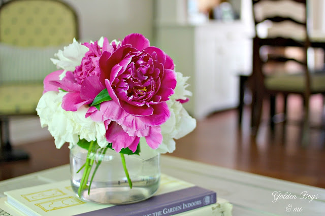 Peonies in living room-www.goldenboysandme.com