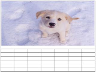 personalizando calendário