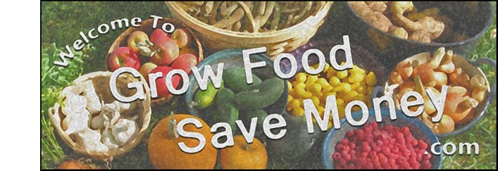 Grow Food Save Money