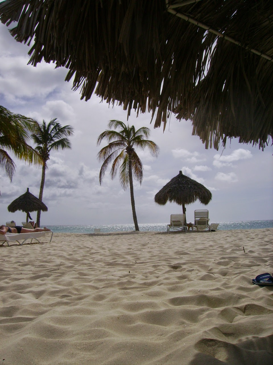 Bucuti's beach Aruba