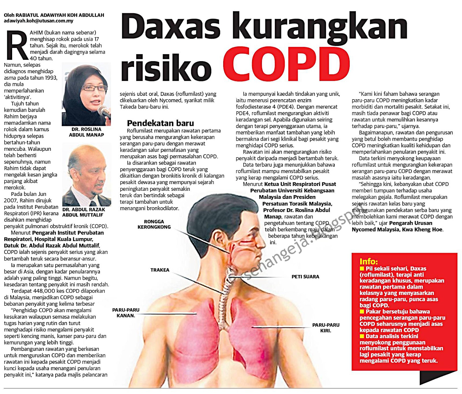 an introduction to the chronic obstructive pulmonary disease copd Introduction in chronic obstructive pulmonary (or lung) disease, chronic means long term, obstructive means breathing is partially blocked and.