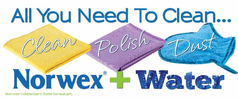 Norwex Clean-Polish-Dustpic_zps9f553b0f.jpg
