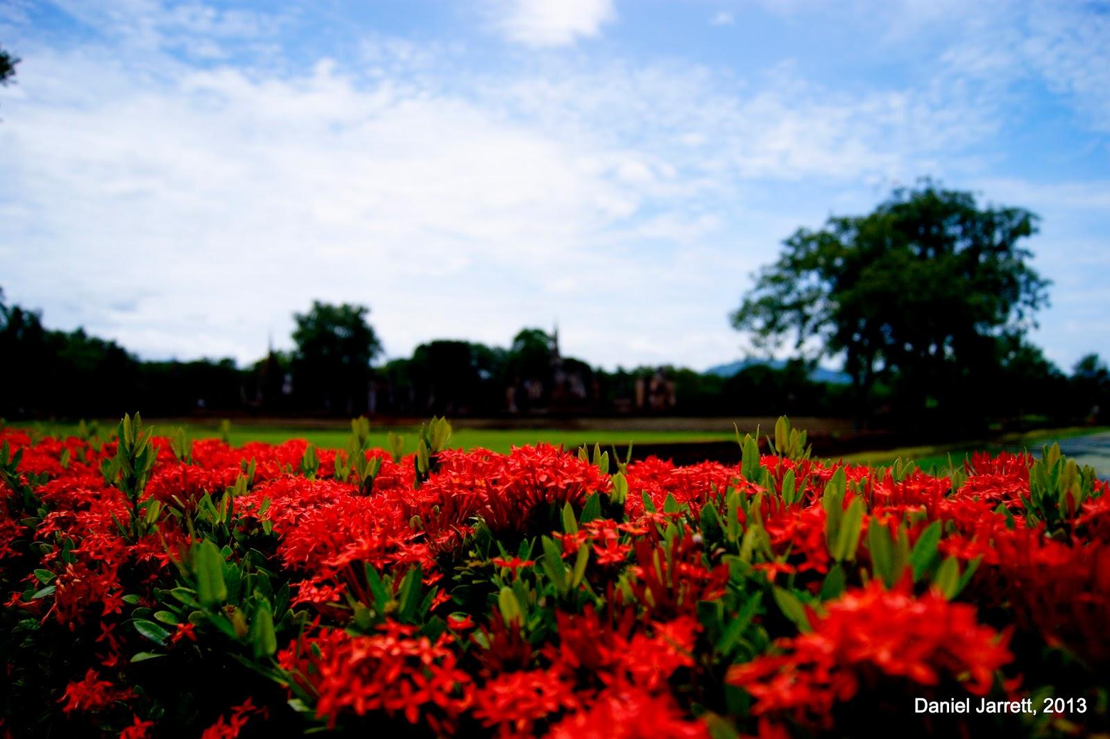 Sukhothai Red