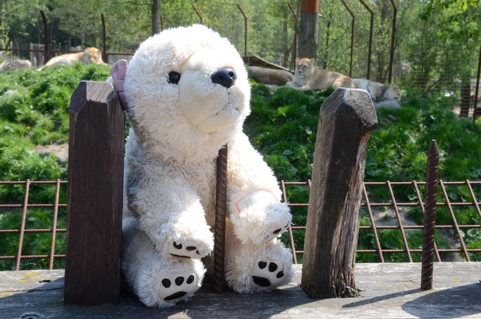 Odense Zoo bordeller i København