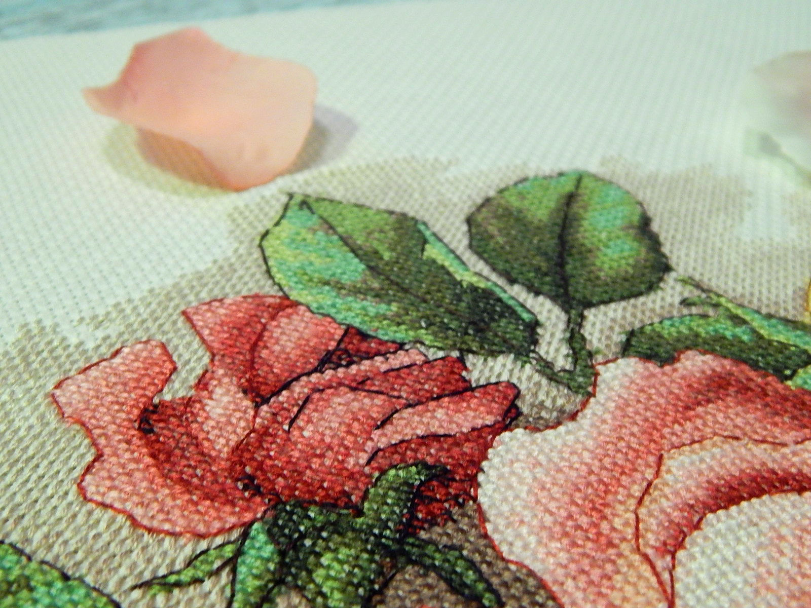 Вышивка срезанные розы дименшенс 12