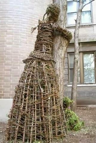 http://www.treehuggerproject.com/