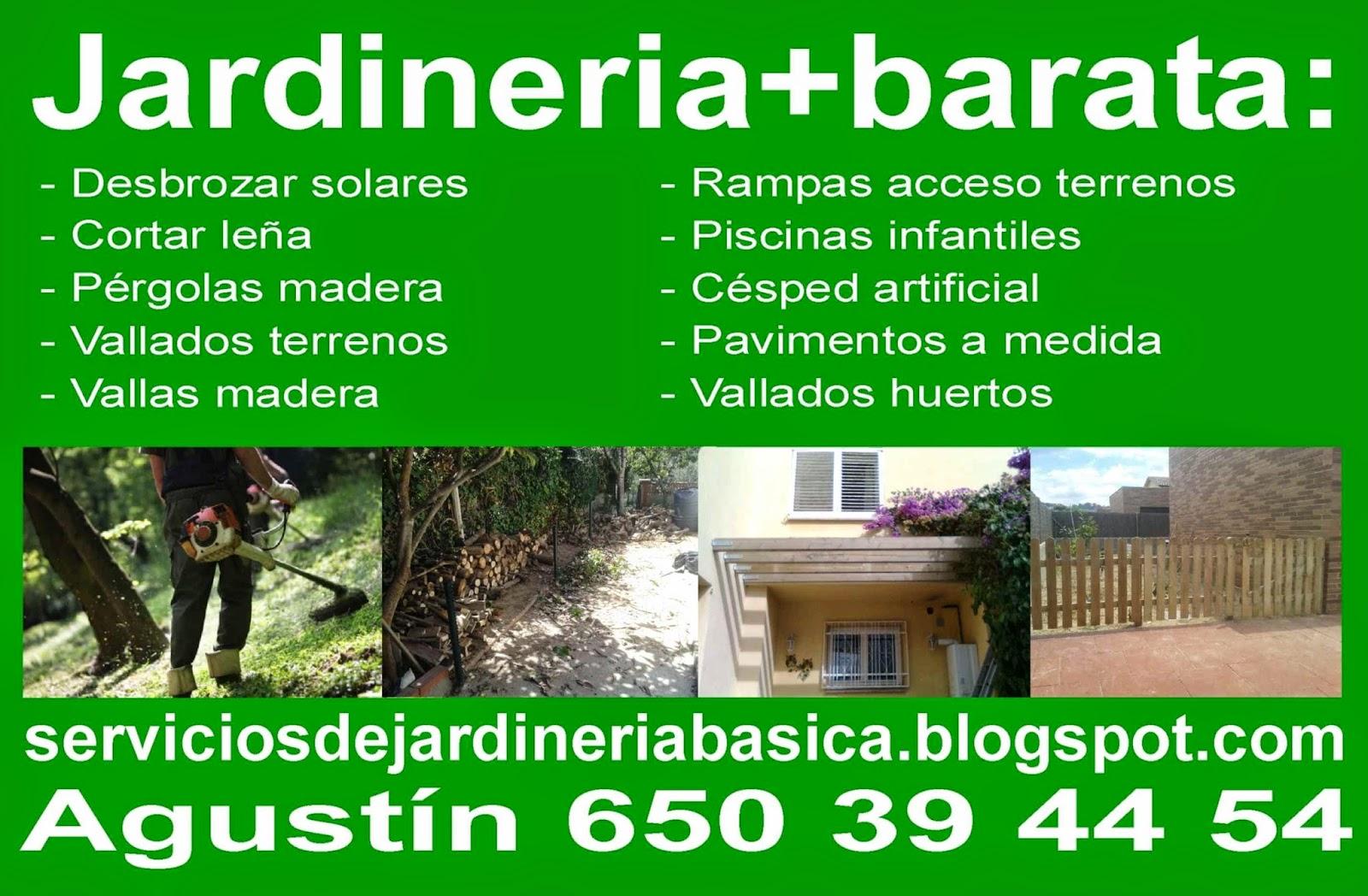 Serviciosdejardineriabasica jardineria barata atenci n for Jardineria barata barcelona