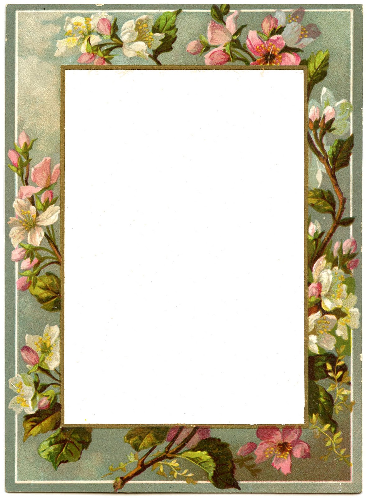 Blossoms frames vintage blossoms french menu vintage for Graphics fairy