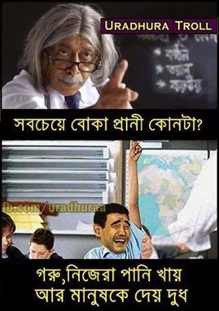 funny photos bangla funny photos new