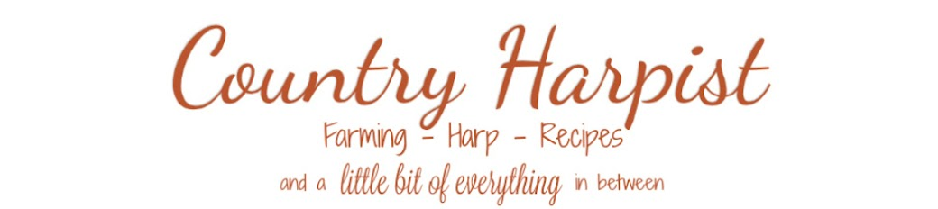 Country Harpist