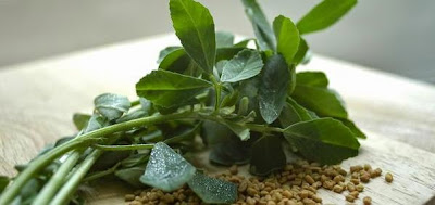 Wild Yam, Sumber Makanan yang Bermanfaat untuk Obat