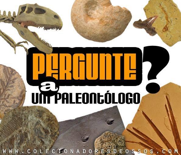 Pergunte a um Paleontólogo
