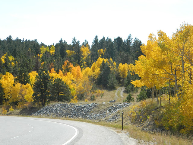 Roaming Rita: Fall Colors in Colorado