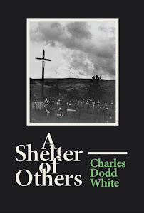 Book Giveaway: A Shelter of Others Ends 8/9