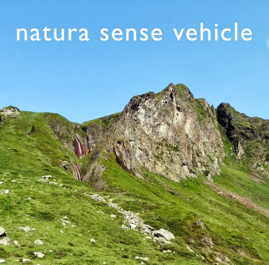 Naturasensevehicle