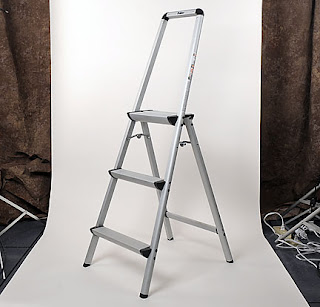 Using a Polder Ultra Light Aluminum 3-Step ladder allows you to see above the crowd.