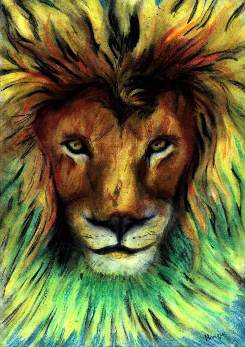 Free Rasta Lion Wallpaper Hd