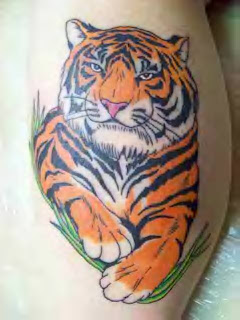 cute tiger tattoo