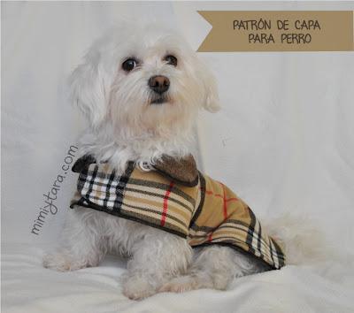 patron de capa para perro