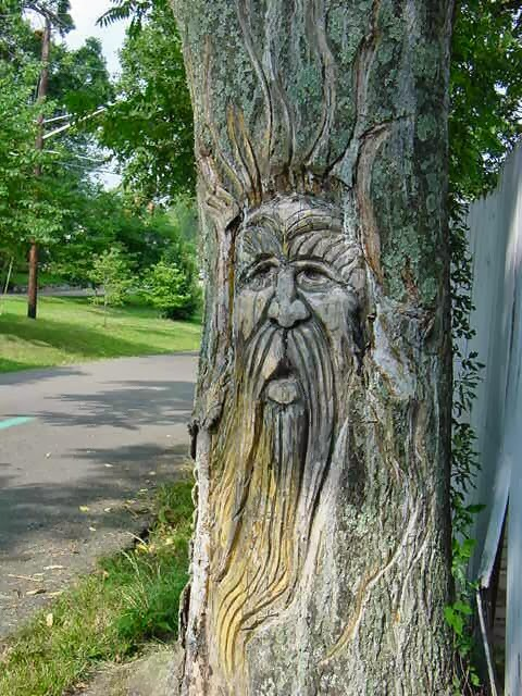 Sometimes, Adding Magic To A Garden Is Enough To Make It Mysterious. Tree  Faces, Sculpture, Boxwood Mazes, Arbors, Vines And Even Labyrinths Can Give  ...