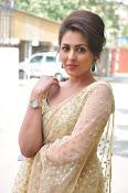Madhu Shalini sizzling in saree-thumbnail-15