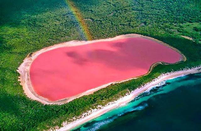 danau berwarna pink yang unik