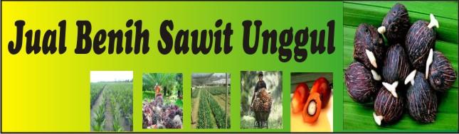 Jual Benih Sawit Unggul