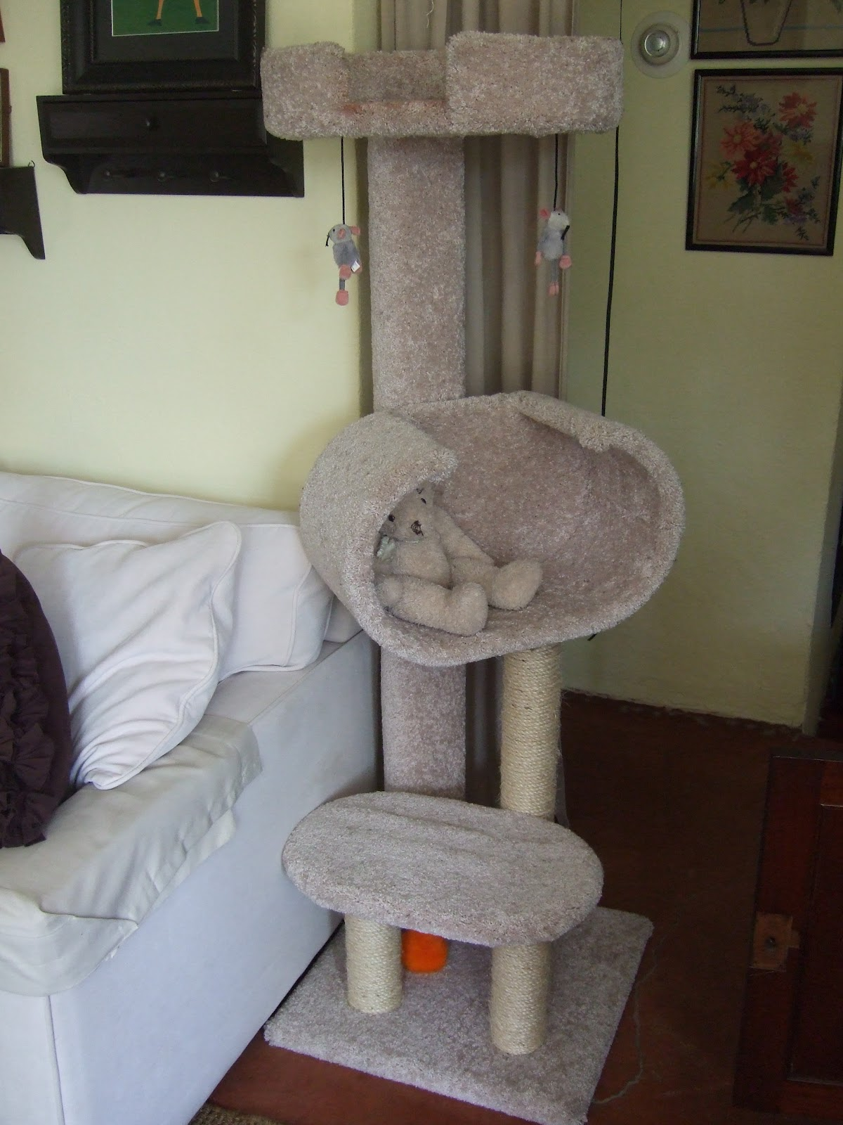 Bentley s fho femoral head ostectomy experience april 2012 for Cat tree steps