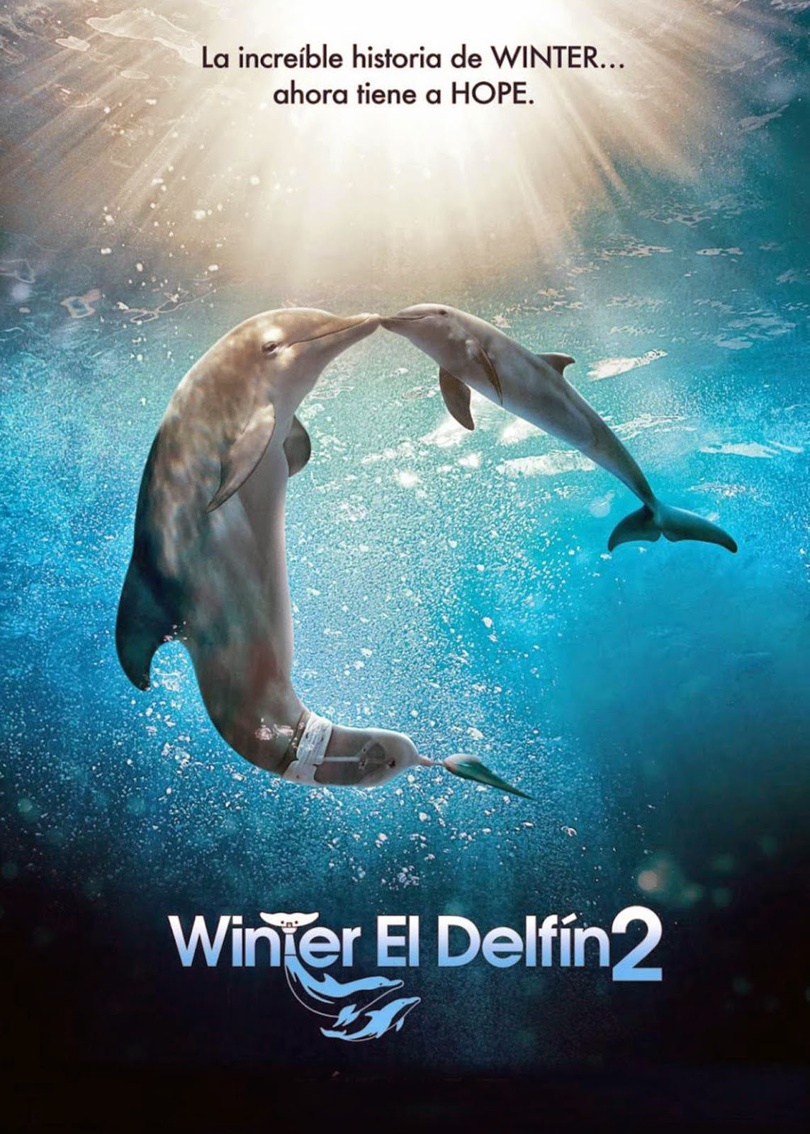 Winter El Delfin 2 (2014) de Charles Martin Smith
